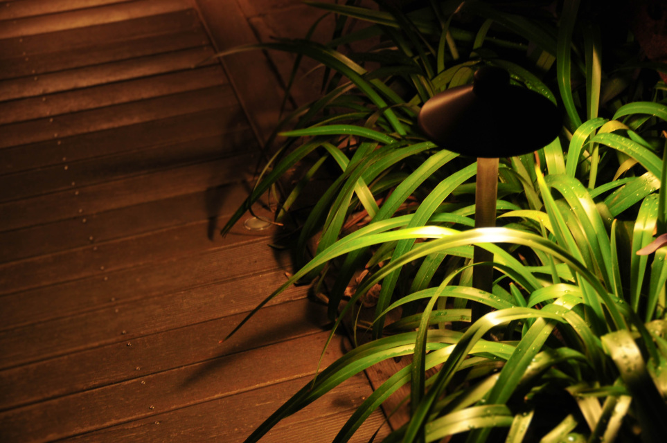 Bilby Brass Led Path Light