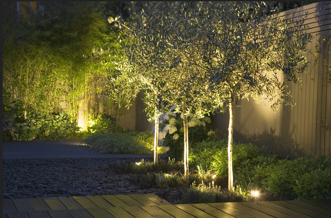 indirect lighting design. As You Can See, Indirect Lighting Is A Vital Part Of Her Design And What Helps To Bring Ambience Warmth The Comfort Your Own Garden.